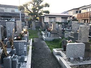 善国寺墓地(明石市林)のお墓・霊園の写真